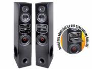 Goldmaster DVP-2150 USB-DVD-SD Kart Girişli Profesyonel Ses Sistemi